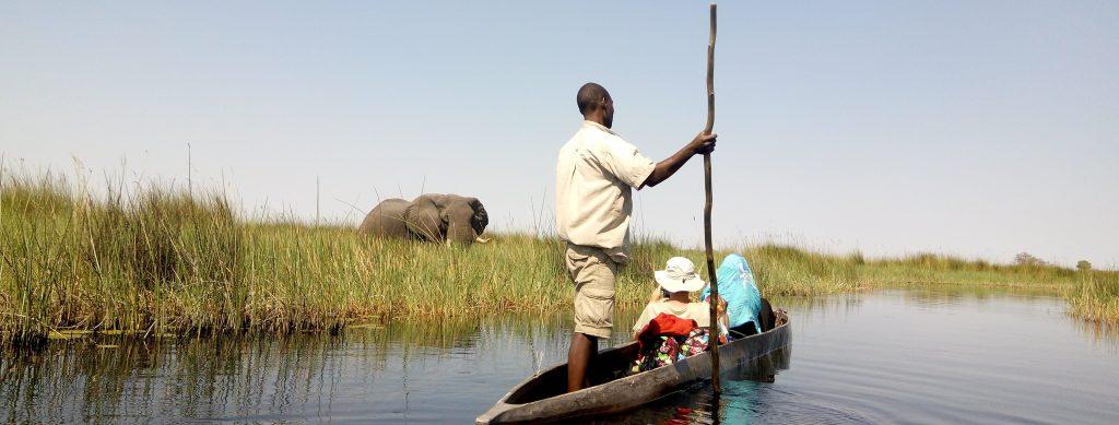 Okavango mokoro safaris